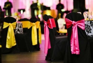 Chair Cover Rentals Mn