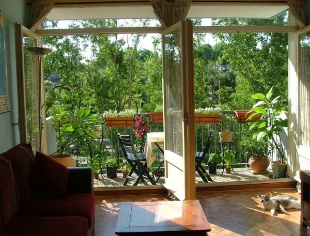 Apartment Patio Garden Ideas