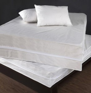 Bed Bug Mattress Cover Twin