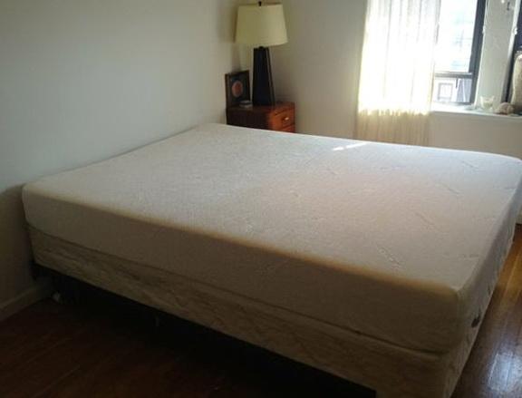 Bed Bug Mattress Cover Walgreens