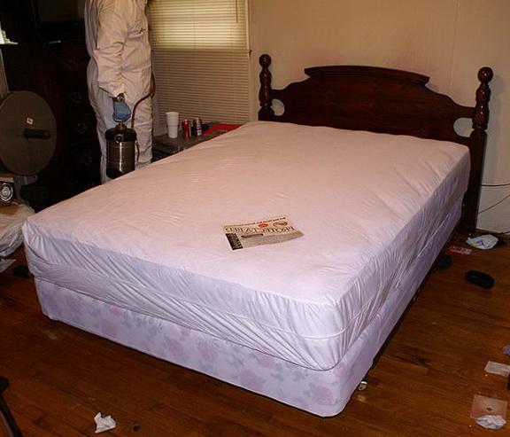 Bed Bug Mattress Cover Walmart
