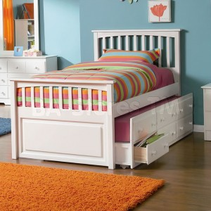 Beds With Storage Drawers