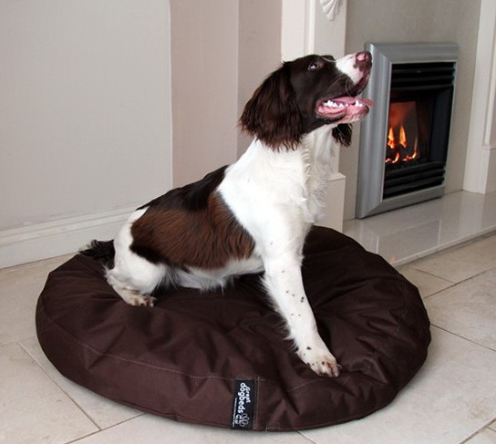Costco Memory Foam Dog Bed