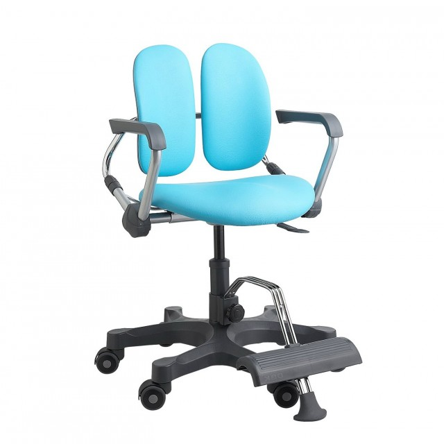 Ergonomic Desk Chair Amazon