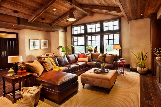 Brown Leather Sofa Interior Design