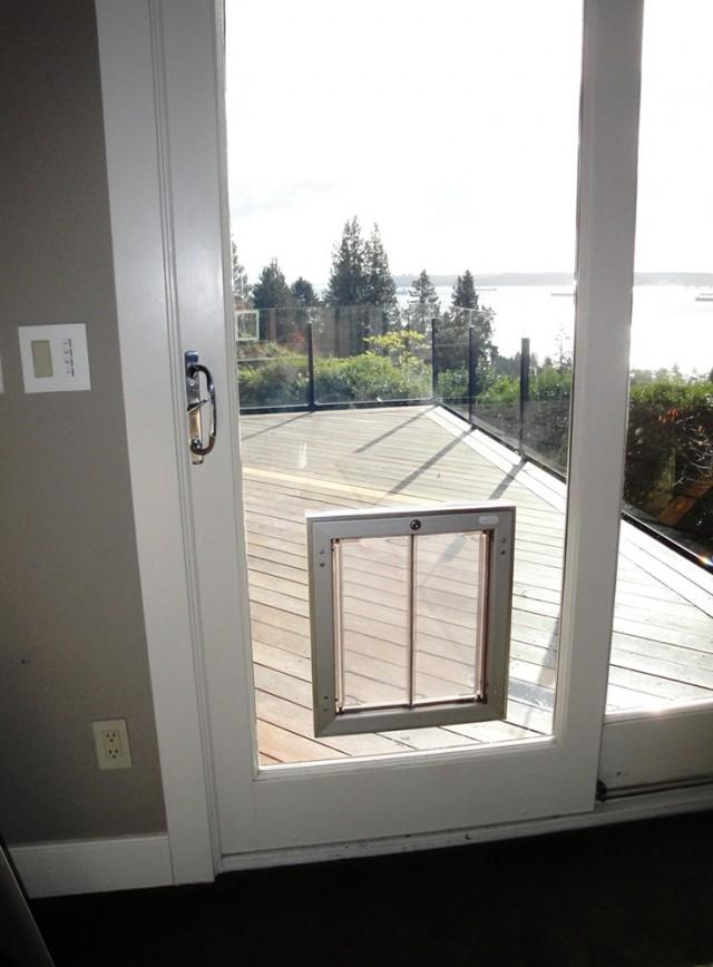 Electronic Dog Door Sliding Glass