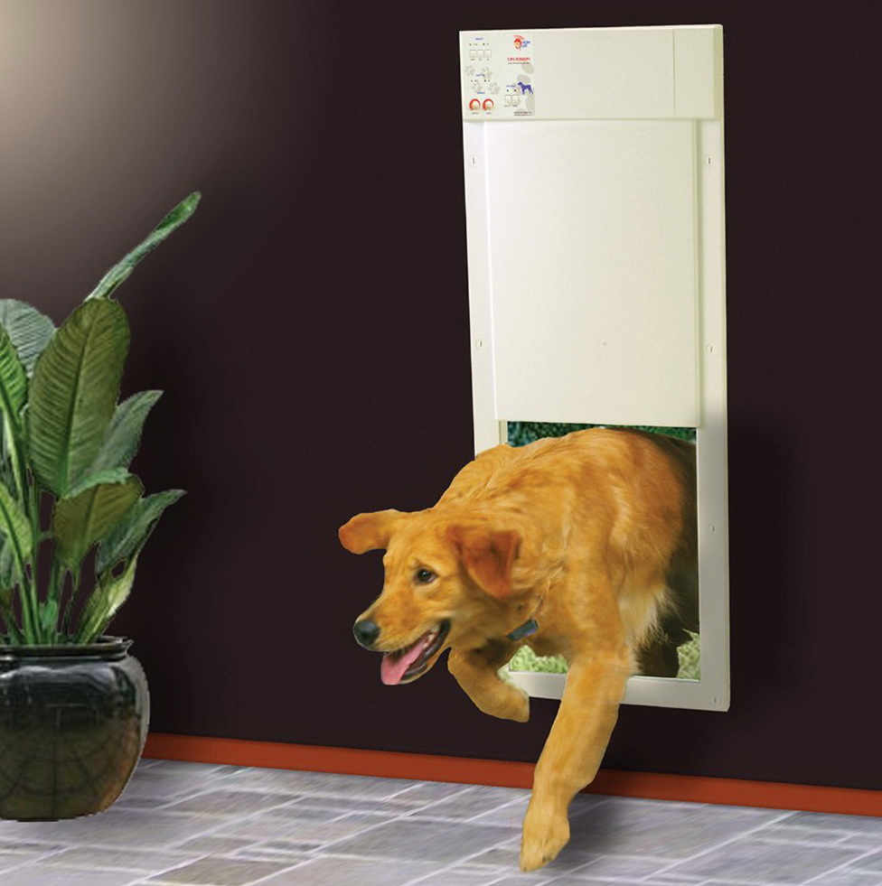 Electronic Dog Door Wall