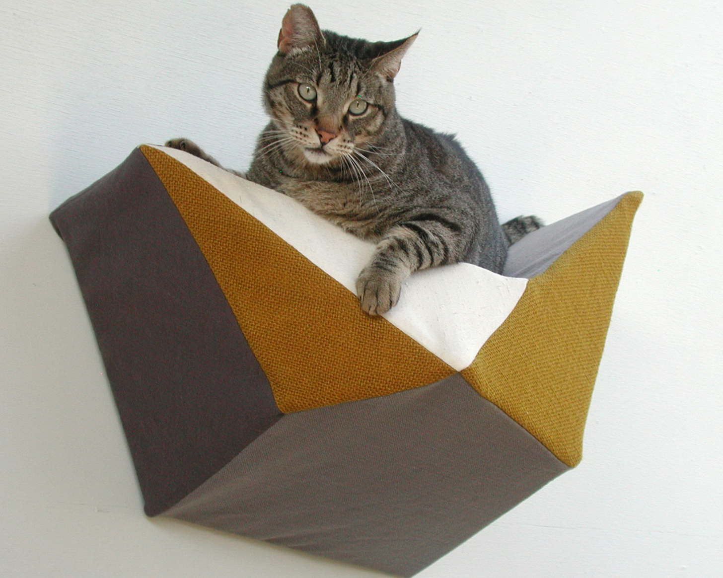 Cat Shelves For Walls Australia