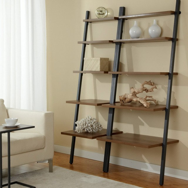 Wall Bookcase With Ladder