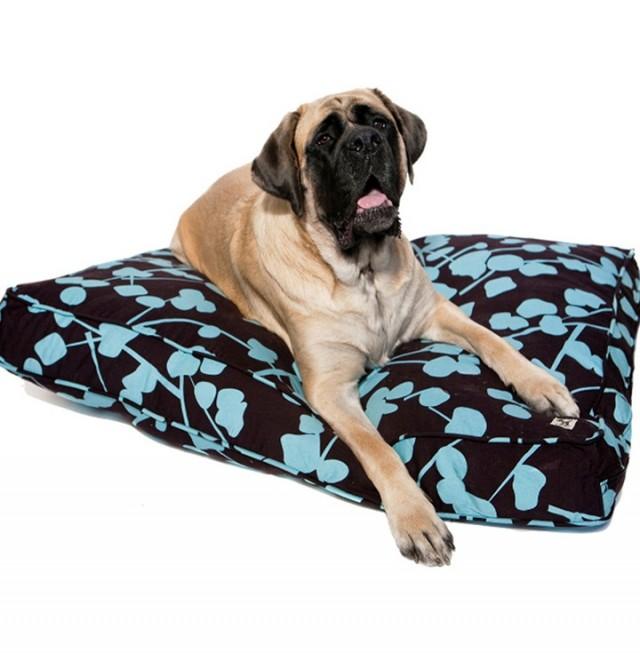 Indestructible Dog Bed Petco Beds 25249 Home Design Ideas