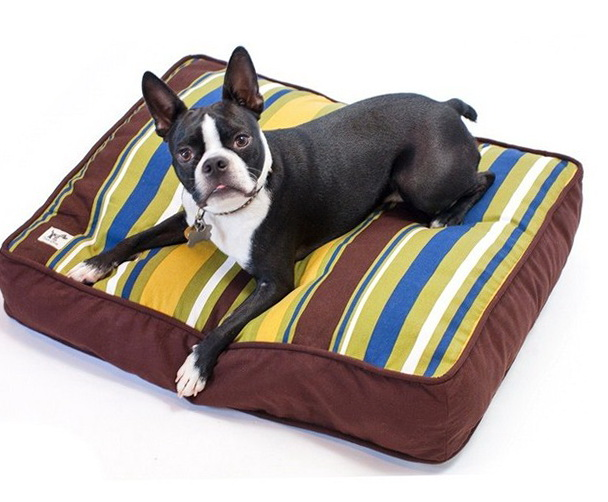 Kong Dog Bed Petsmart Beds 19216 Home Design Ideas