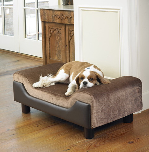 Large Dog Beds With Sides