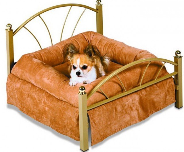 Memory Foam Dog Bed Sams Club Beds 28784 Home Design