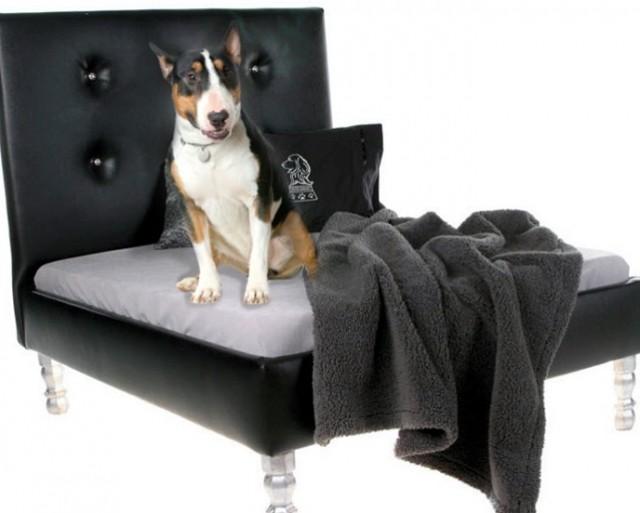 Memory Foam Dog Bed Sam's Club