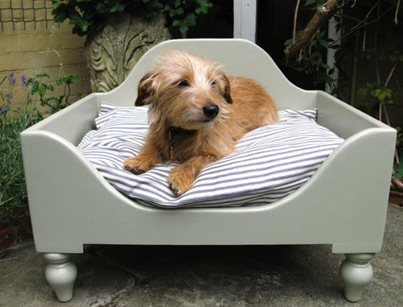 Best Dog Bed In The World