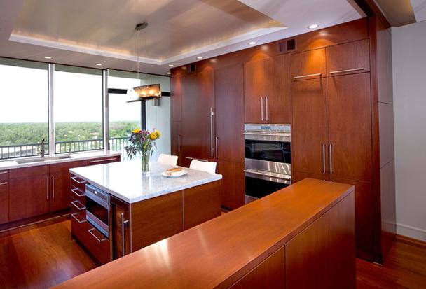Contemporary Kitchen Cabinets Houston