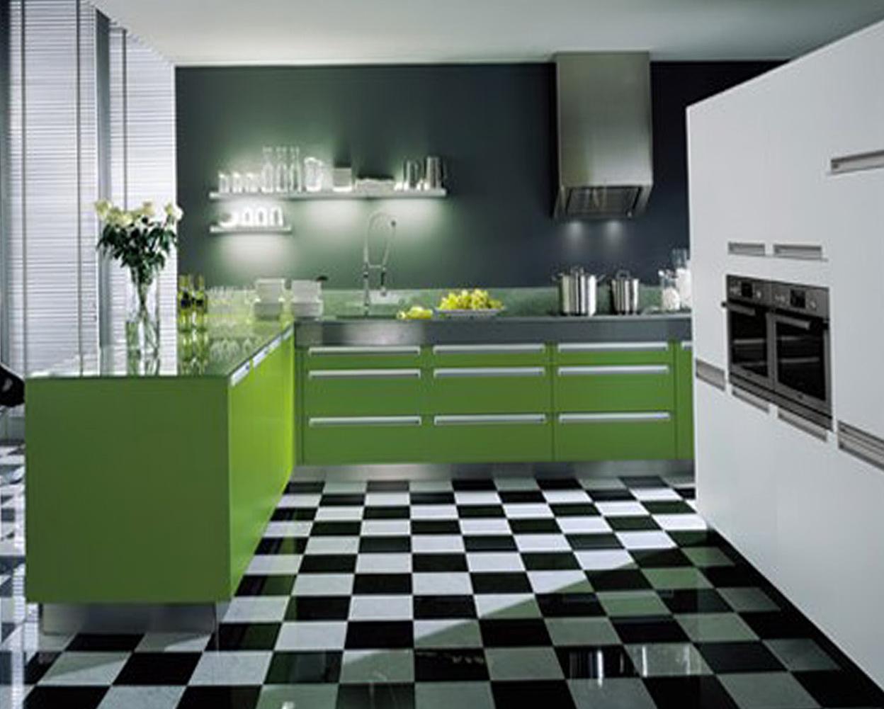Contemporary Kitchen Designs 2013