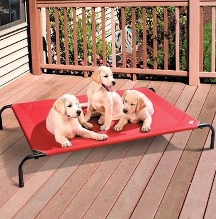 Coolaroo Dog Bed Medium