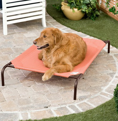 Coolaroo Dog Bed Review