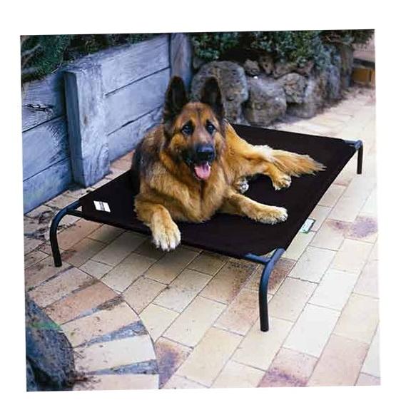 Coolaroo Dog Bed Sizes
