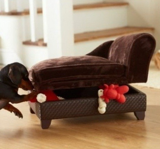 Designer Dog Beds Nz