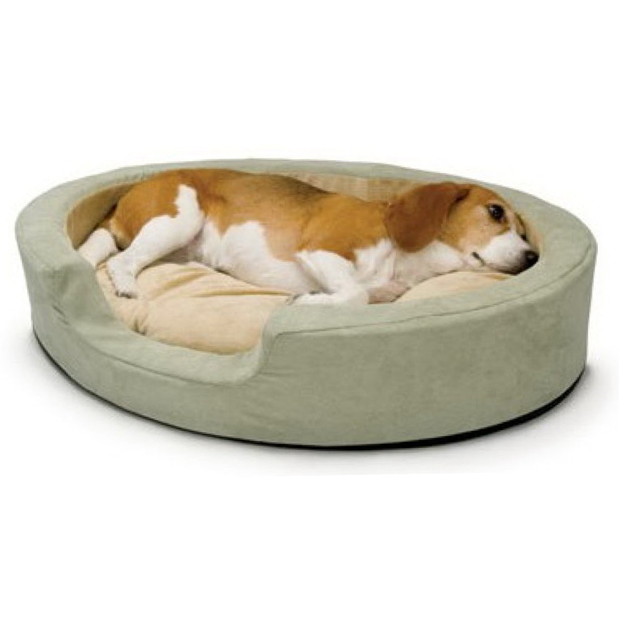 Heated Dog Bed Reviews