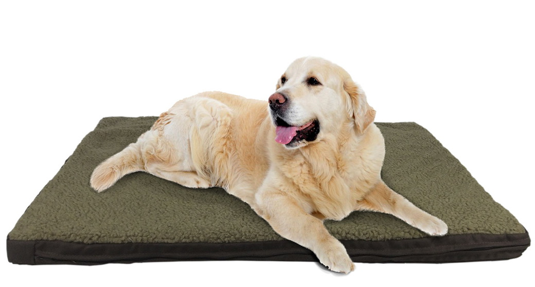 Heated Dog Beds For Arthritic Dogs