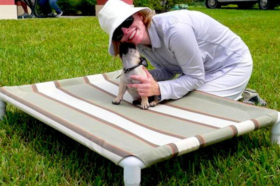 How To Make A Raised Dog Bed