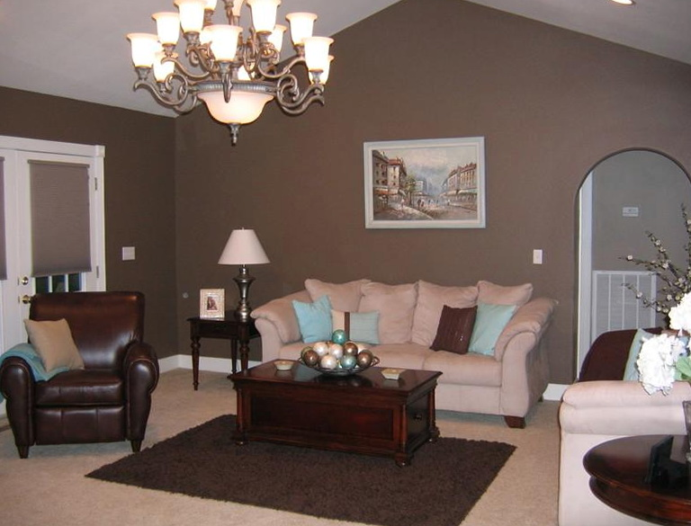 Living Room Colors Brown