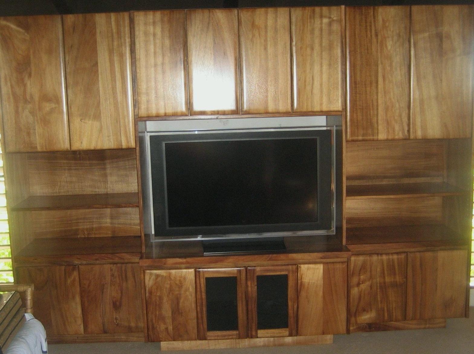 Tv Cabinet With Doors To Hide Tv