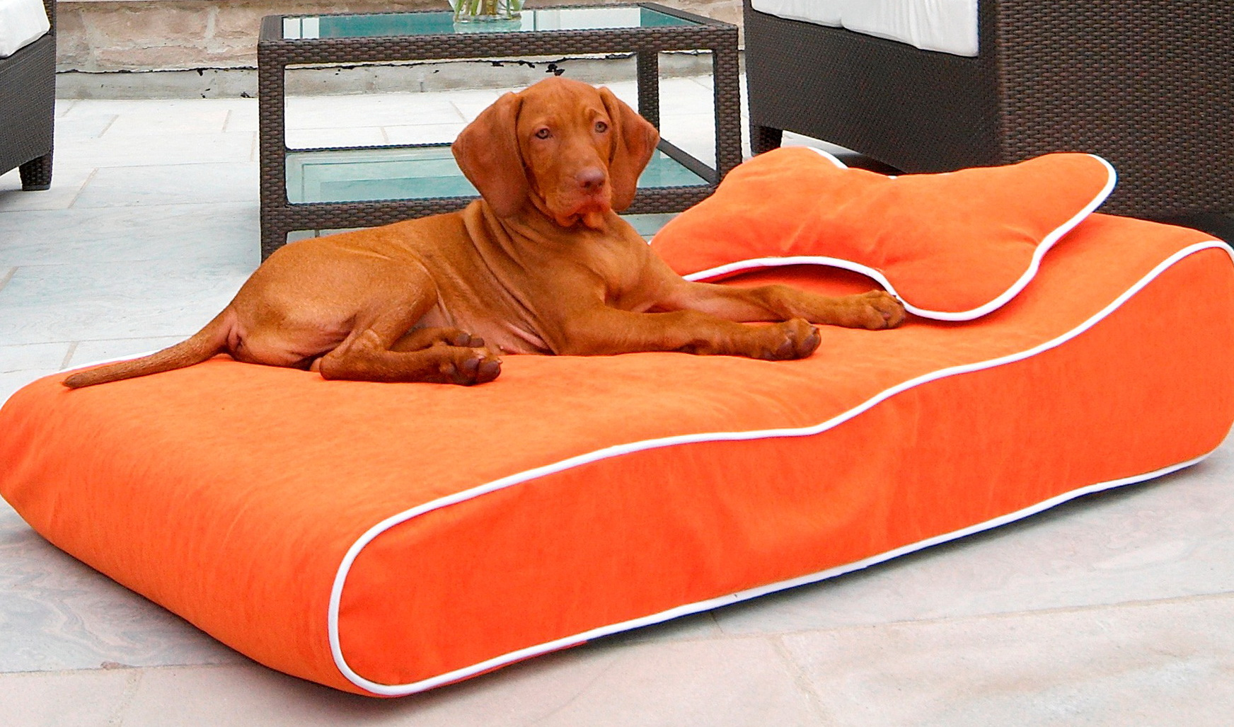 Waterproof Dog Bed Extra Large
